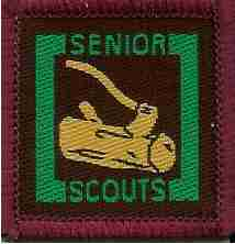 The Senior Scout Forester Badge